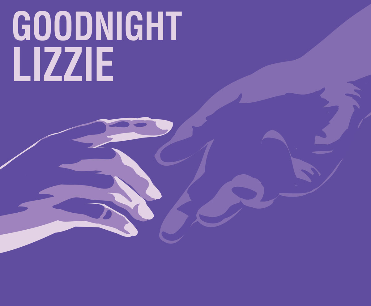 Goodnight Lizzie - Illustration